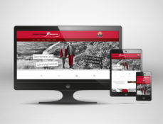 Responsive Webdesign - Screenshots down-town-sports.de
