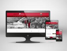 Responsive Webdesign - Screenshots down-town-sports.de